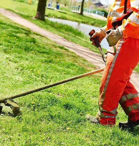 Стрижка газона в Екатеринбурге